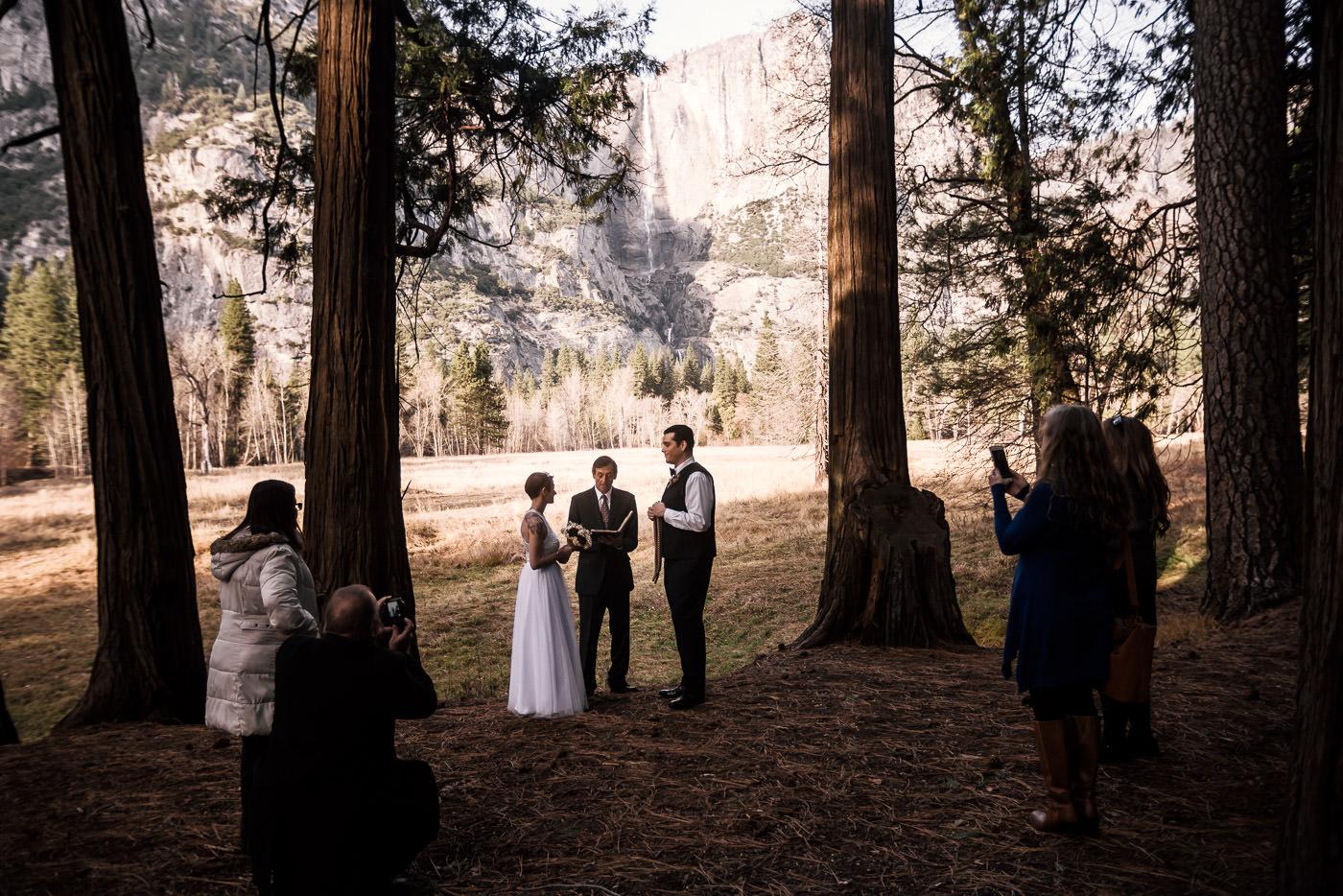 Intimate elopement ceremony between two beautiful pines at Swinging Bridge in Yosemite National Park.