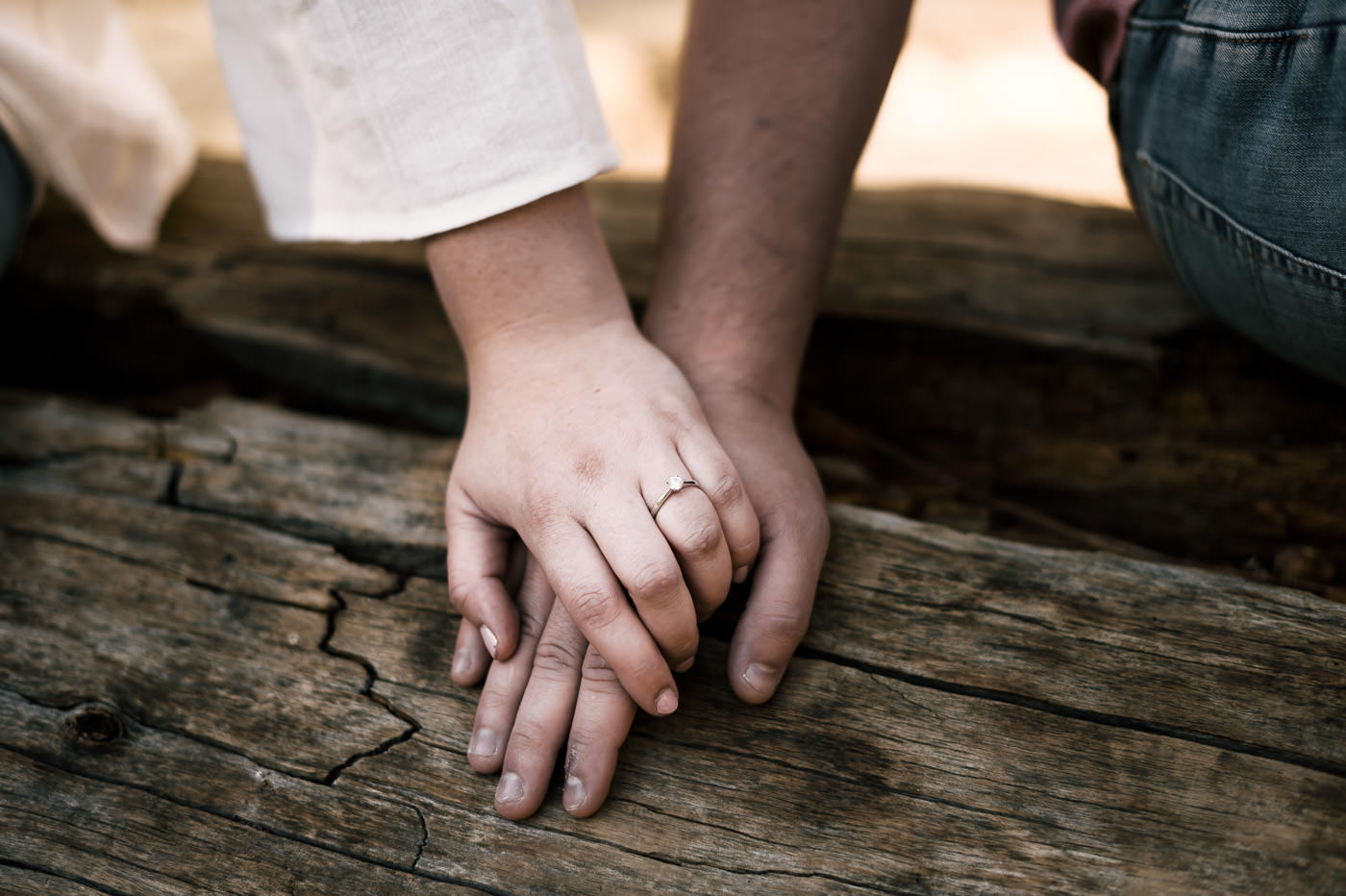 Love birds hold hands on a log to show off the beautiful engagement ring.