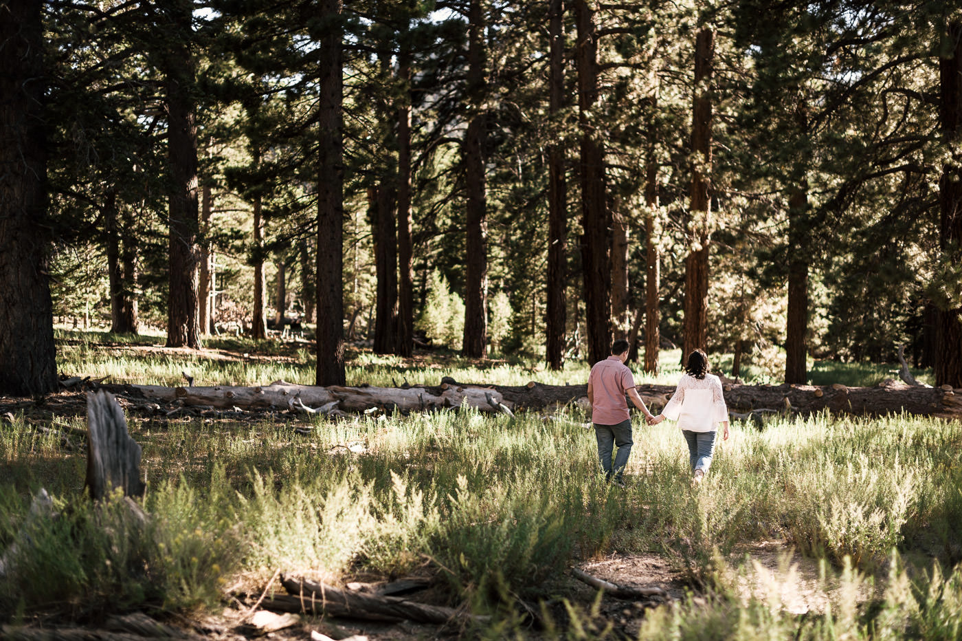 Romantic stroll through the forest after an intimate engagement on Mt San Jacinto