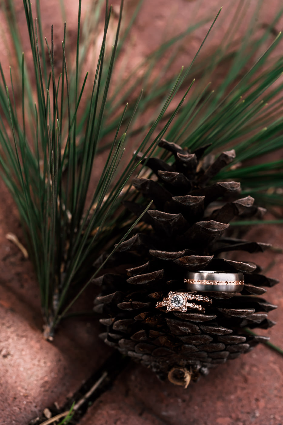 Wedding rings sit in a Pine cone on a brick floor with pine needles.
