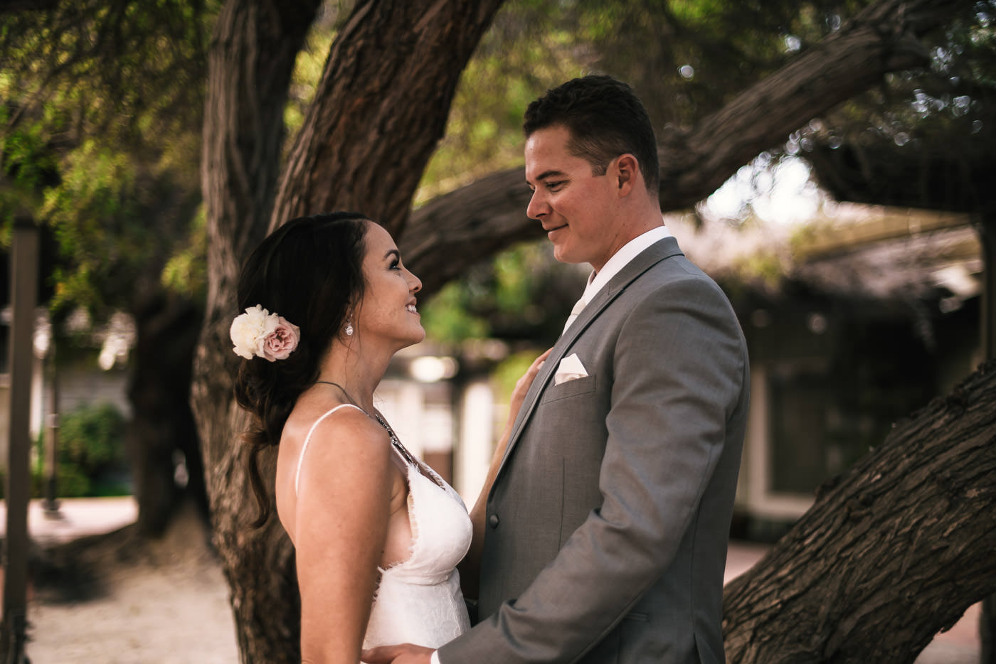Bride and groom hold each other close as they stand in front of a twisting tree at Marina VIllage.