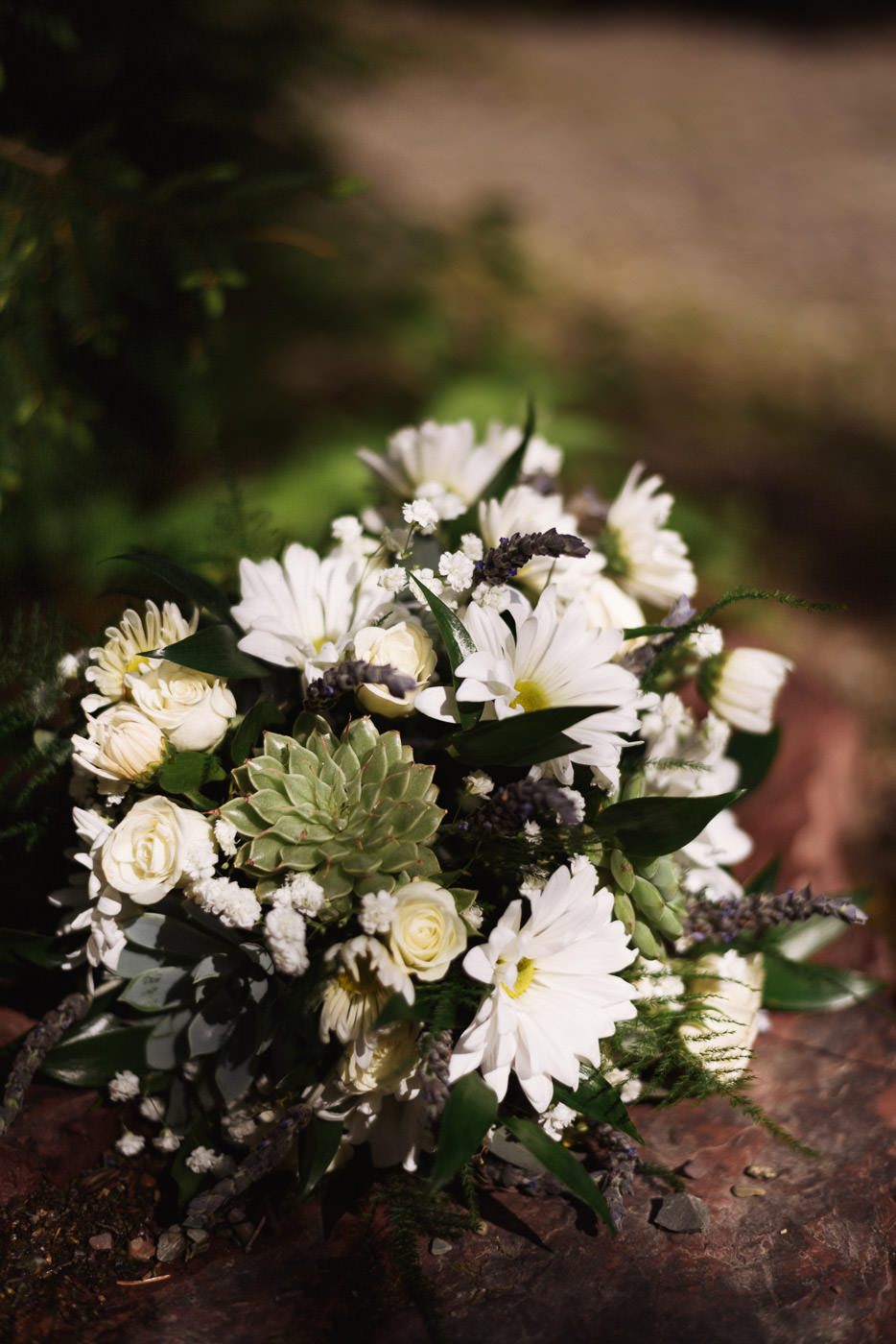 Beautiful white daisy wedding bouquet with succulent details.