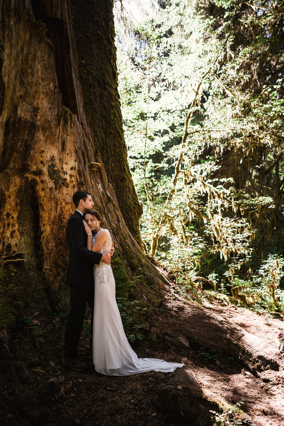 Lovers stand beneath a Giant cedar in a rainforest after their intimate wedding in the National Parks.