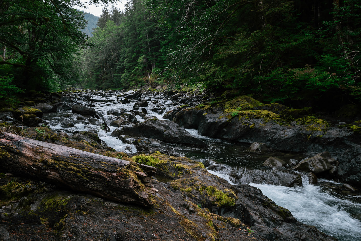 The Sol Duc River and hot springs are one of Olympics most beautiful elopement destinations.