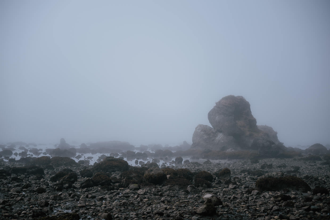 Fog obscures the rocks exposed by the low tide at Ozette Beach in Olympic National Park.