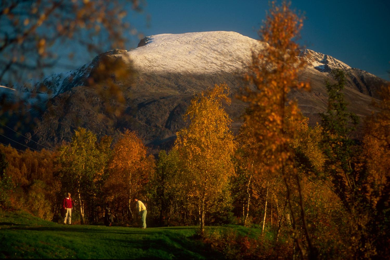 bilder_golf4.jpg