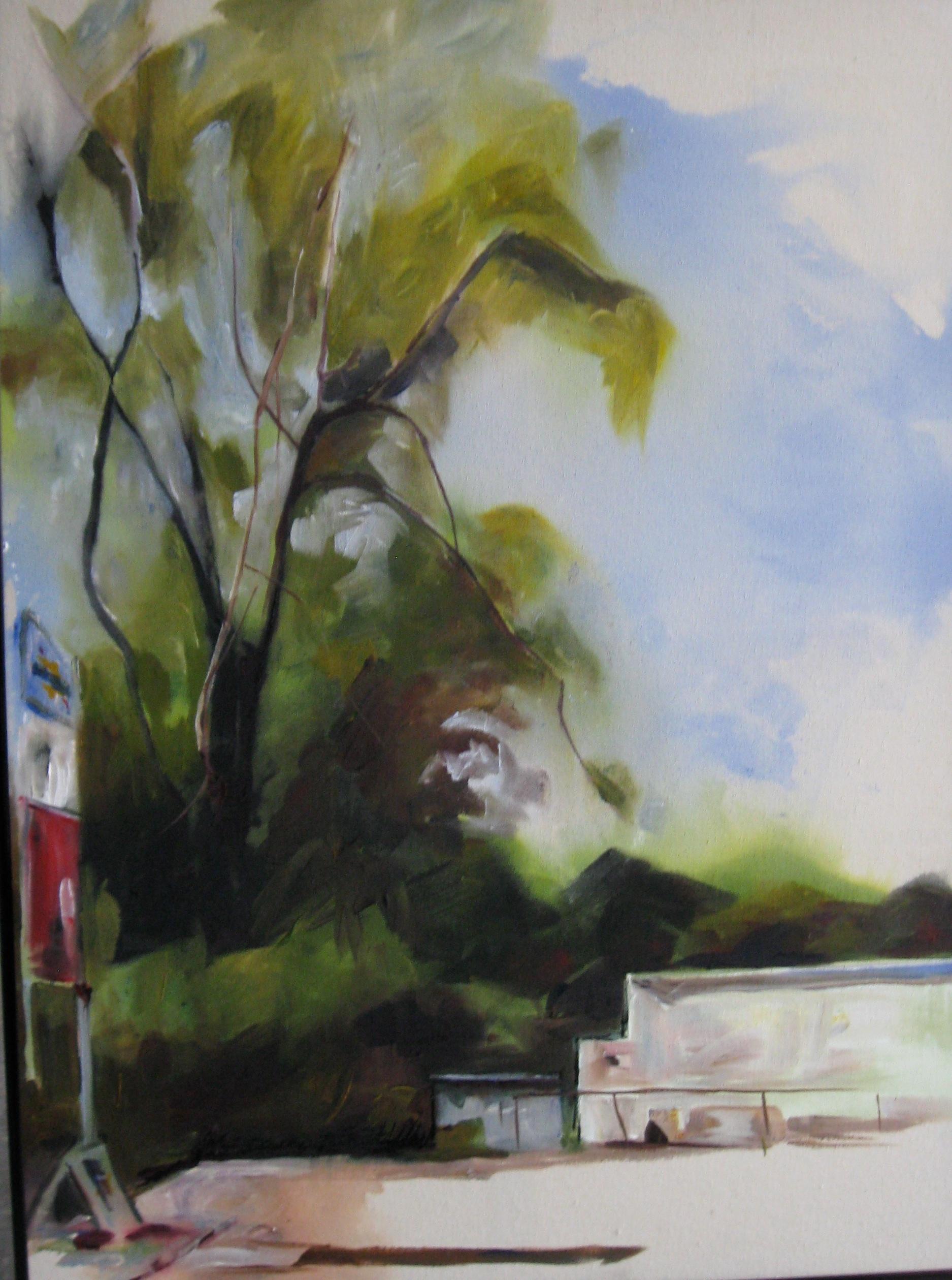 Sunoco Landscape