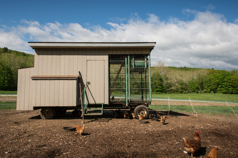 Farm-6.jpg