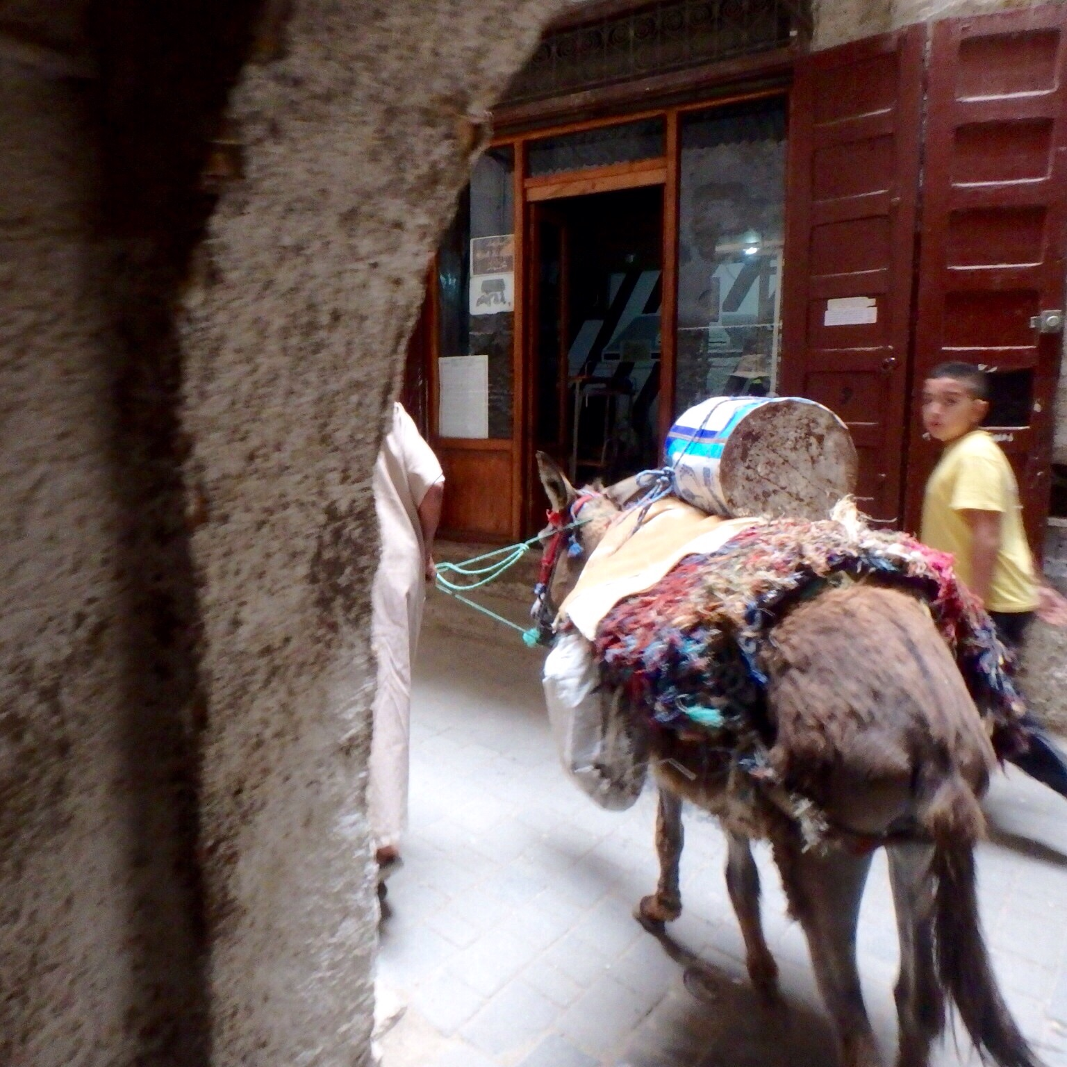Donkeys, mules and handcarts are the main means of transportation in the medina.