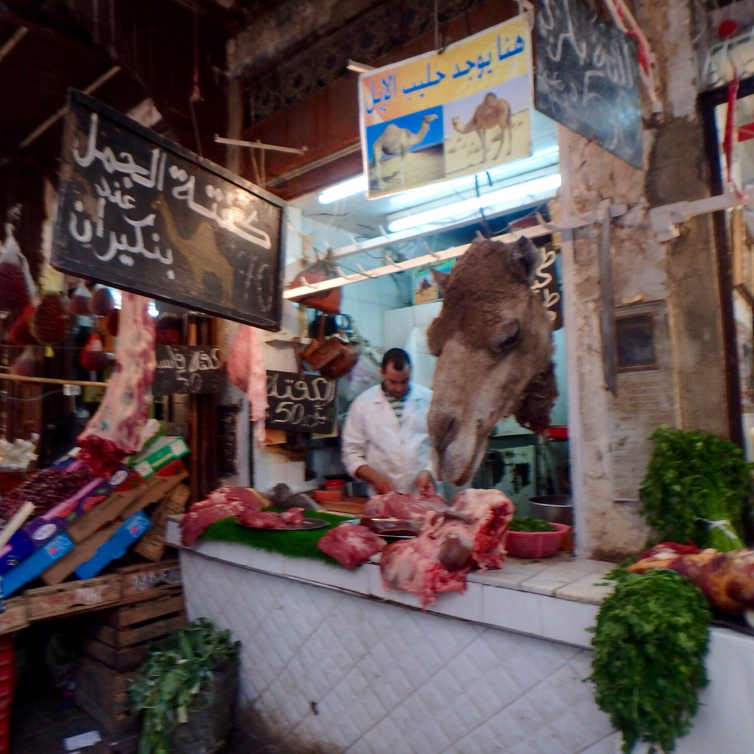 The only camel butcher in the medina, as far as I know.