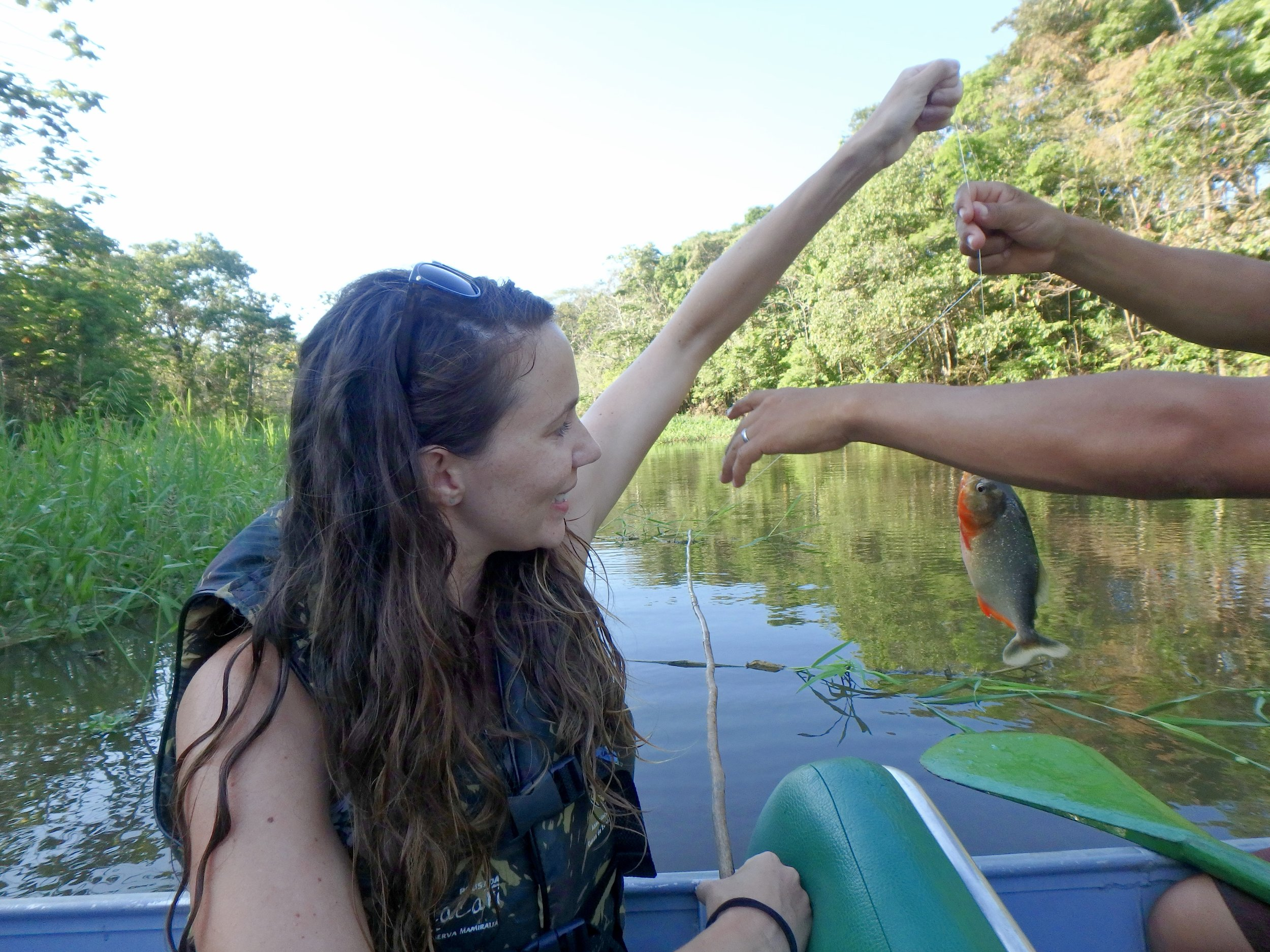 Piranha fishing is surprisingly easy. Here, the guide tells me not to let my arm so close to the fish's mouth...