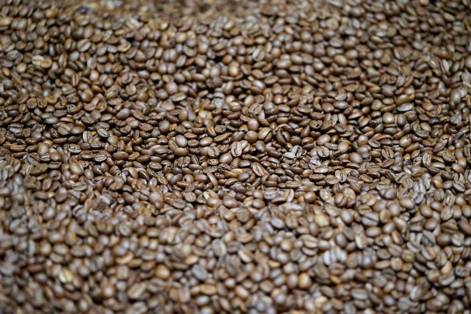 lamill-coffee-factory-tour-4.jpg