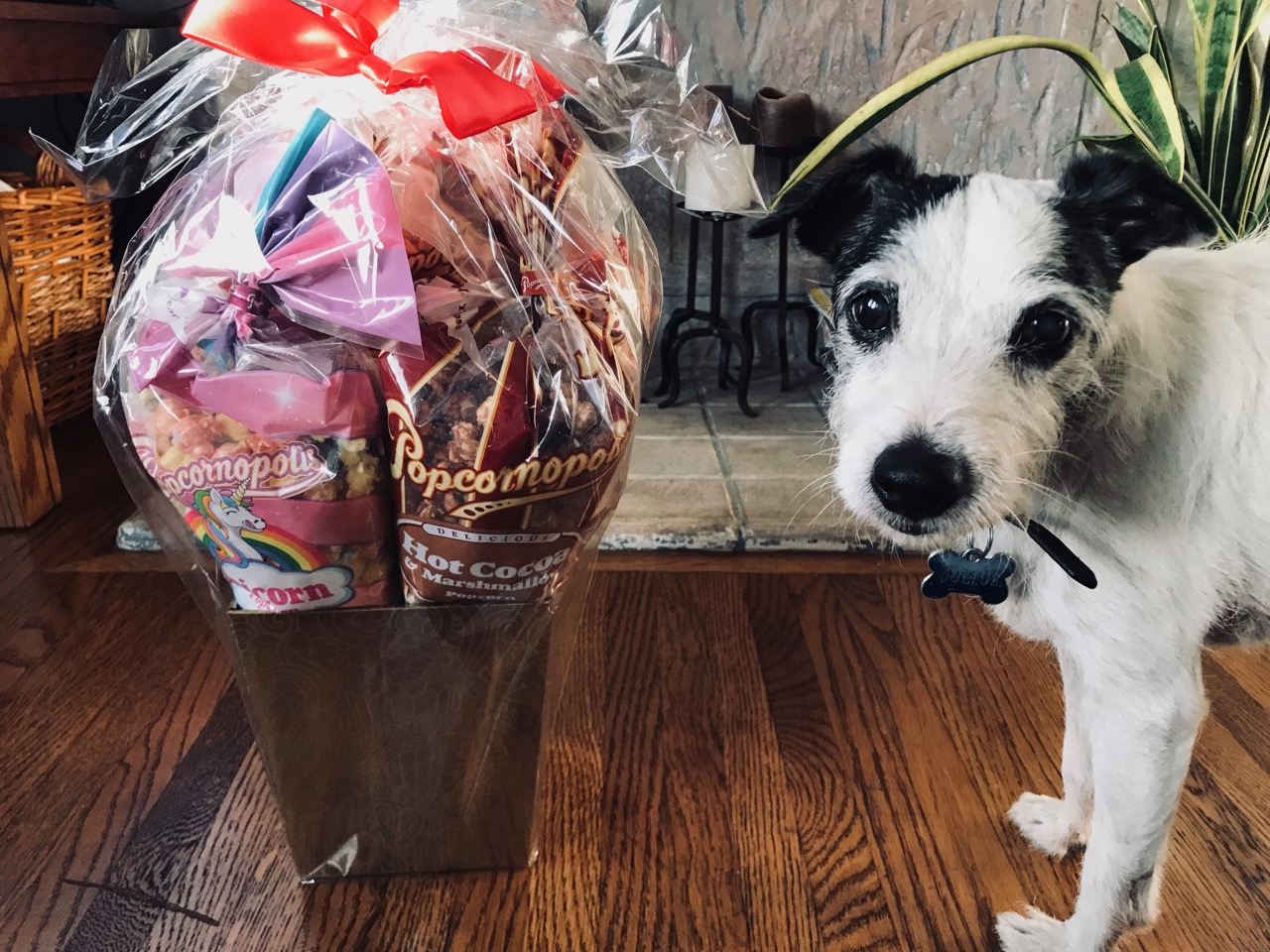Popcornopolis-Gift-Basket.jpg