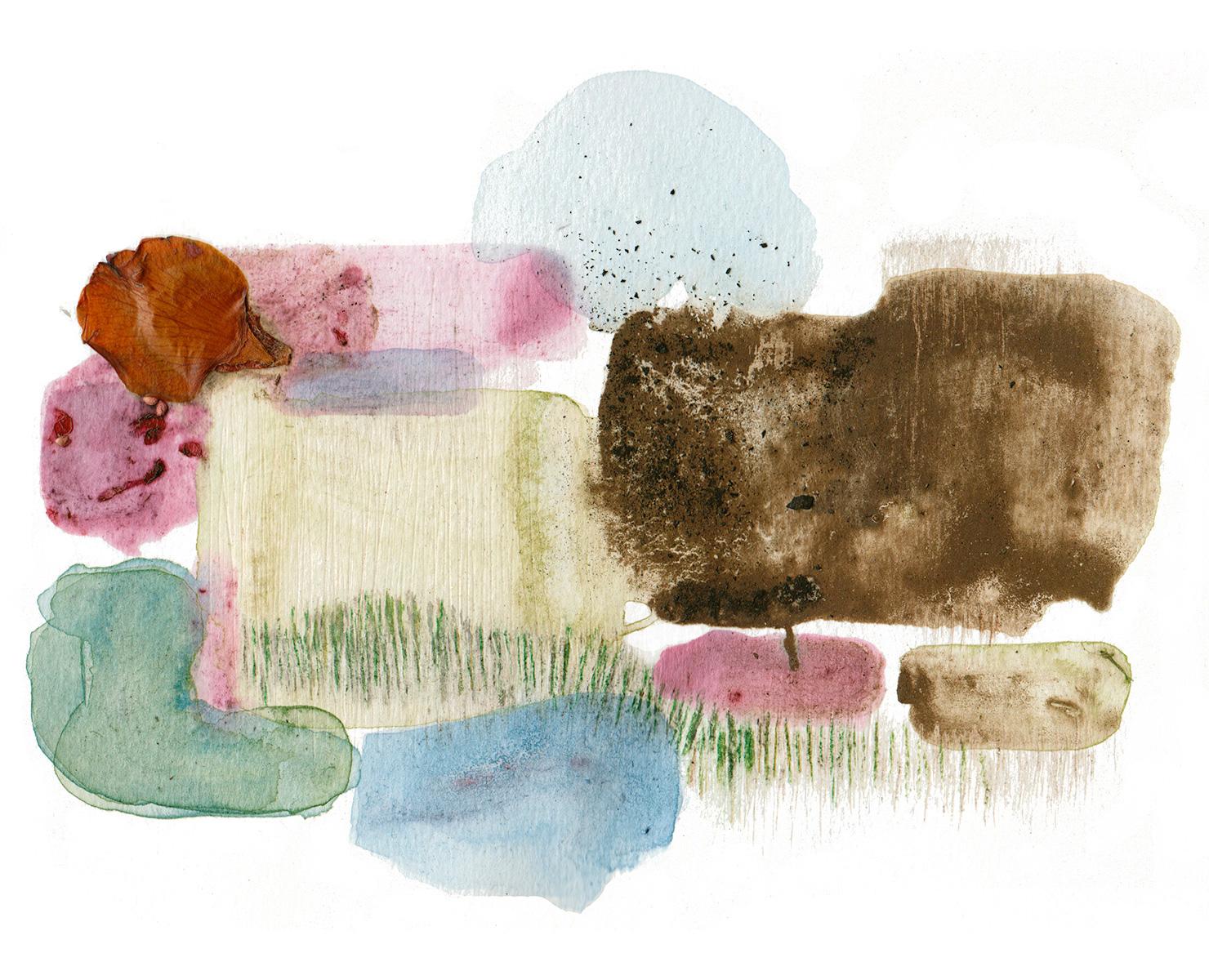 "N38°16'23"", W122°15'9""  Grass, minerals, dirt, berries, dandelions / 13 in x 10 in"