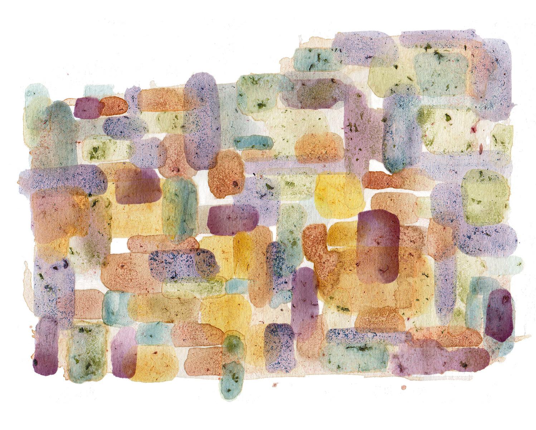 "N38°30'40.32"", W122°13'35""  Grass, minerals, dirt, berries, dandelions / 13 in x 10 in"