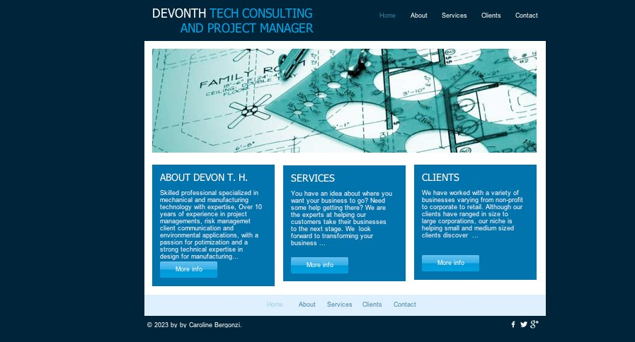 Technical consulting and services.