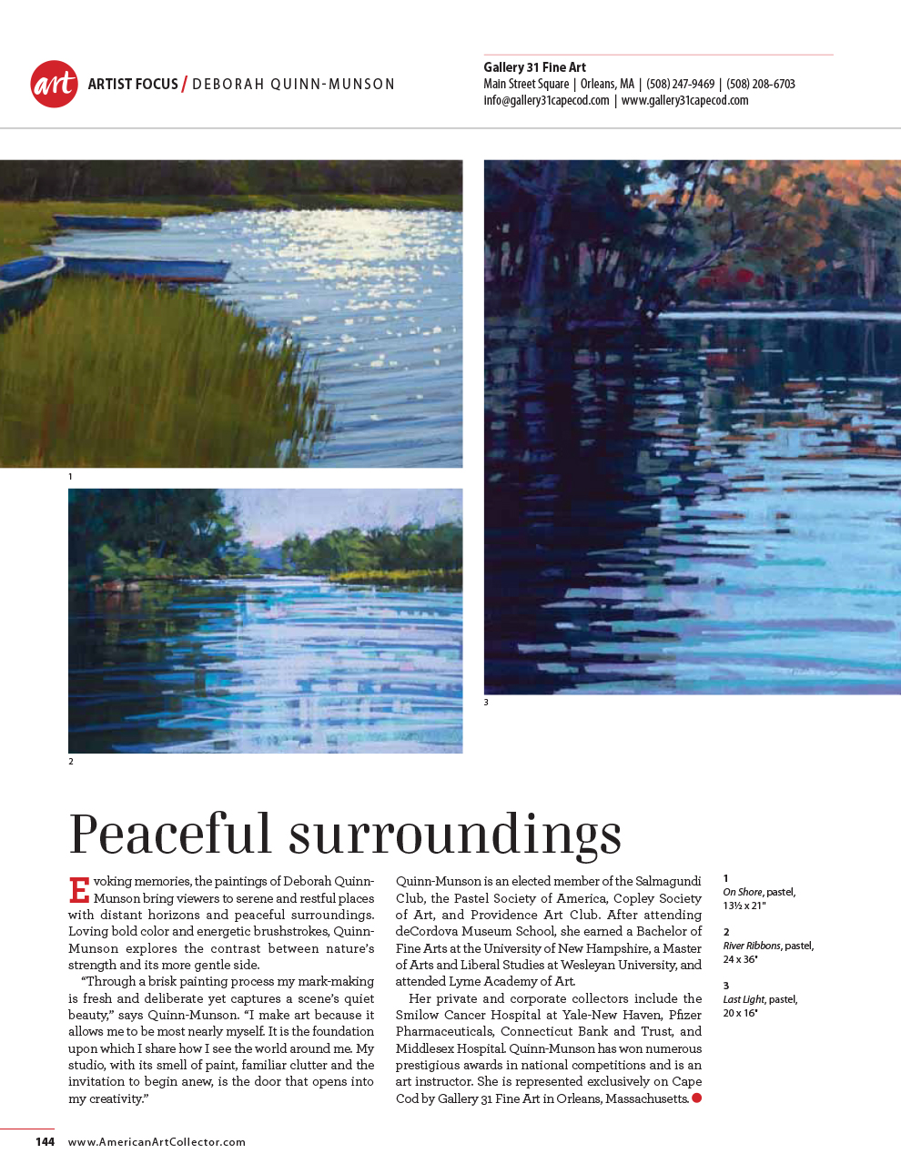 This is a page which appeared in   The American Art Collector   magazine in its June 2014 issue, focusing on the pastels of Deborah.