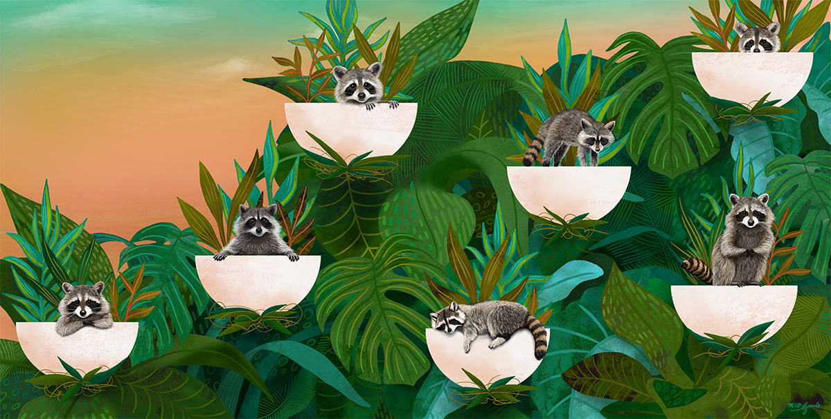 19-20-racoons-2.png