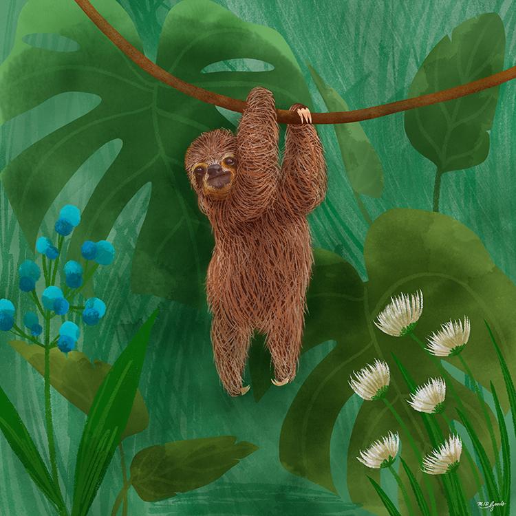 sloth1.png