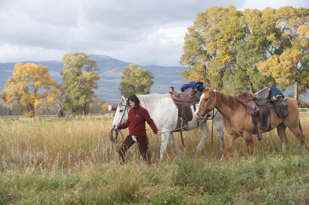 A woman walks two horses