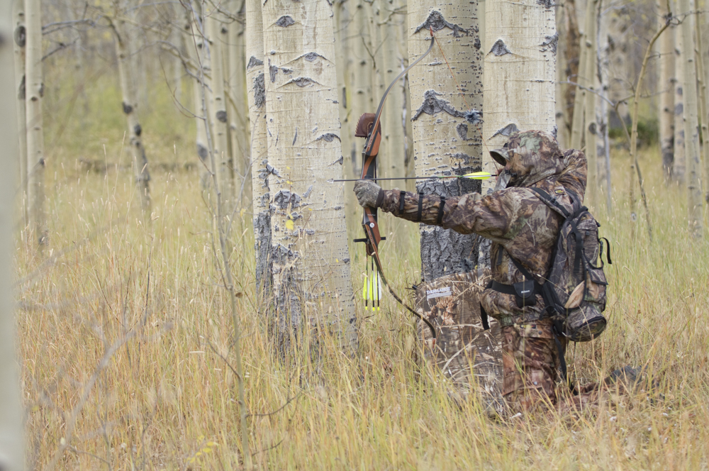 A bowhunter draws his bow in aspens