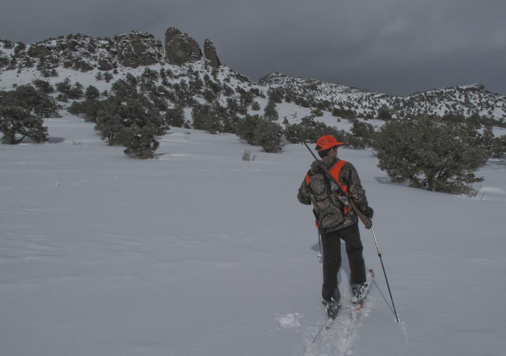 Elk hunting on skis