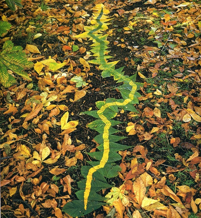 """Green to Yellow Leaves"" (1980), by Andy Goldsworthy. Source: http://visualmelt.com/Andy-Goldsworthy"