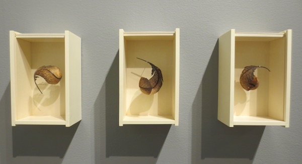 """Feather Boxes"" (2017), by Miriam Carpenter. Moderne Gallery, Philadelphia, PA. Fuller Craft Museum, Brockton MA."