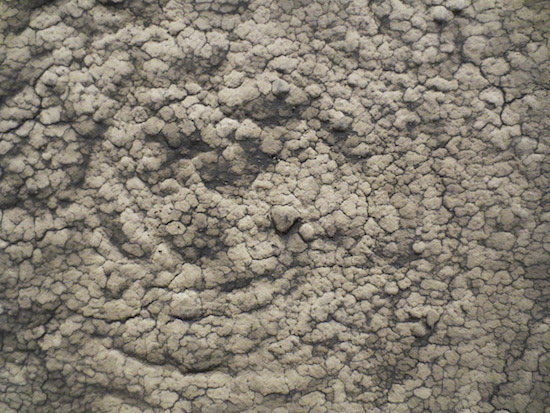"Detail of ""Untitled"" (1963), by Marcos Grigorian. Dried earth on canvas. Museum of Modern Art, New York."