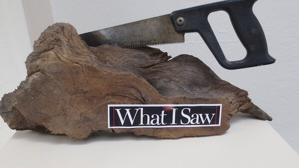 What I Saw , by Larry Fuente. mixed media