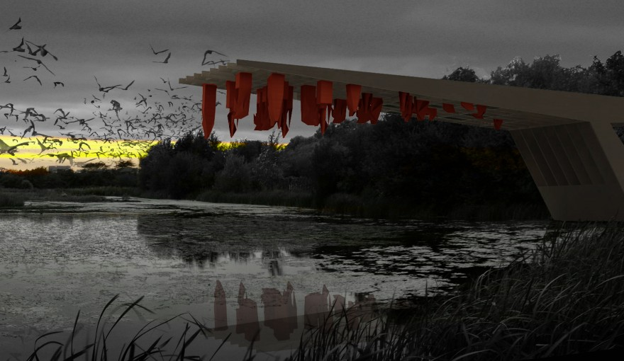 Bat-House-Website-Layout9-880x510.jpg
