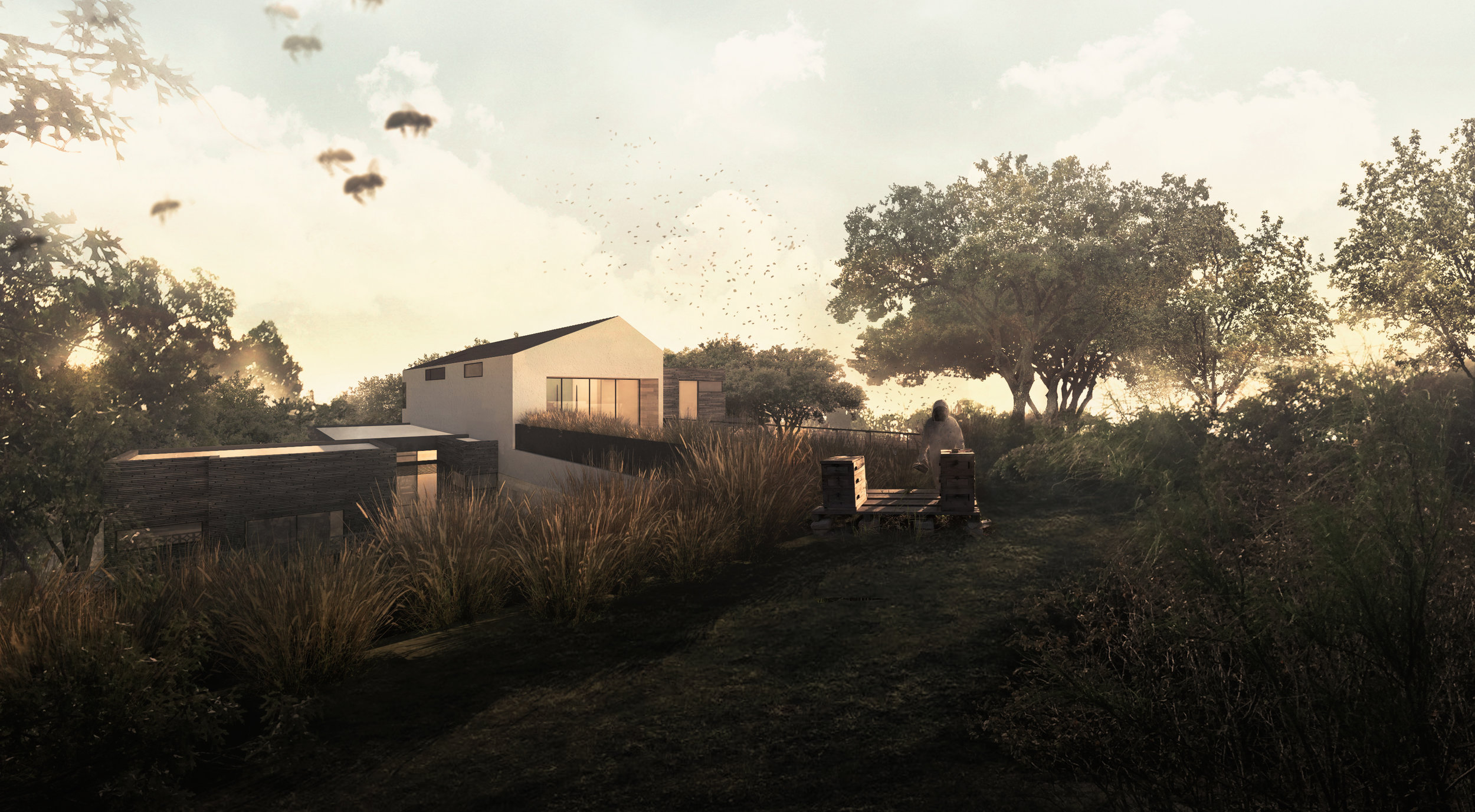 Matt Fajkus MF Architecture Descendant House Rendering Rear.jpg