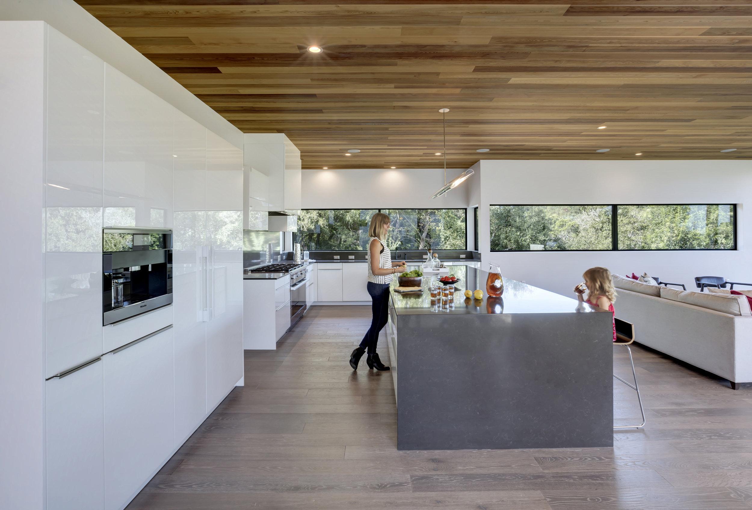 Matt Fajkus MF Architecture Bracketed Space House 16 by Charles Davis Smith.jpg