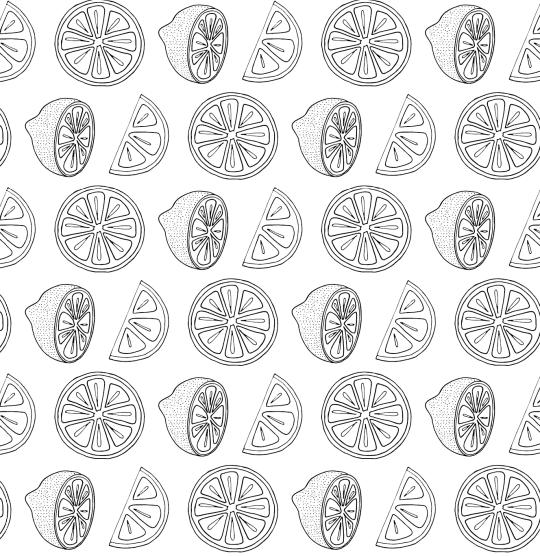 Succulents-01.jpg