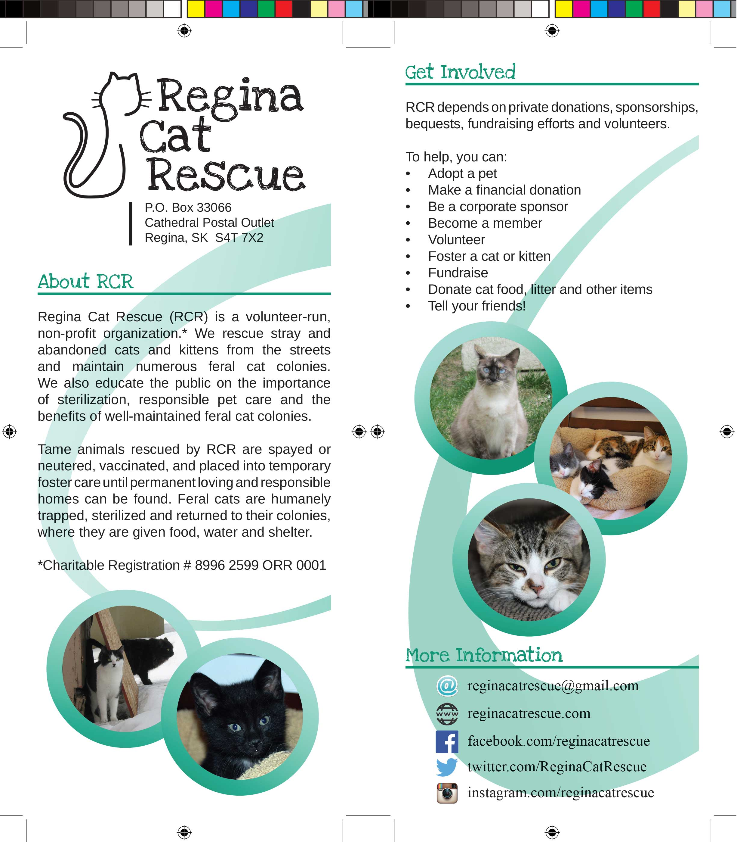 Regina-Cat-Rescue---Rack-Card---FINAL.jpg