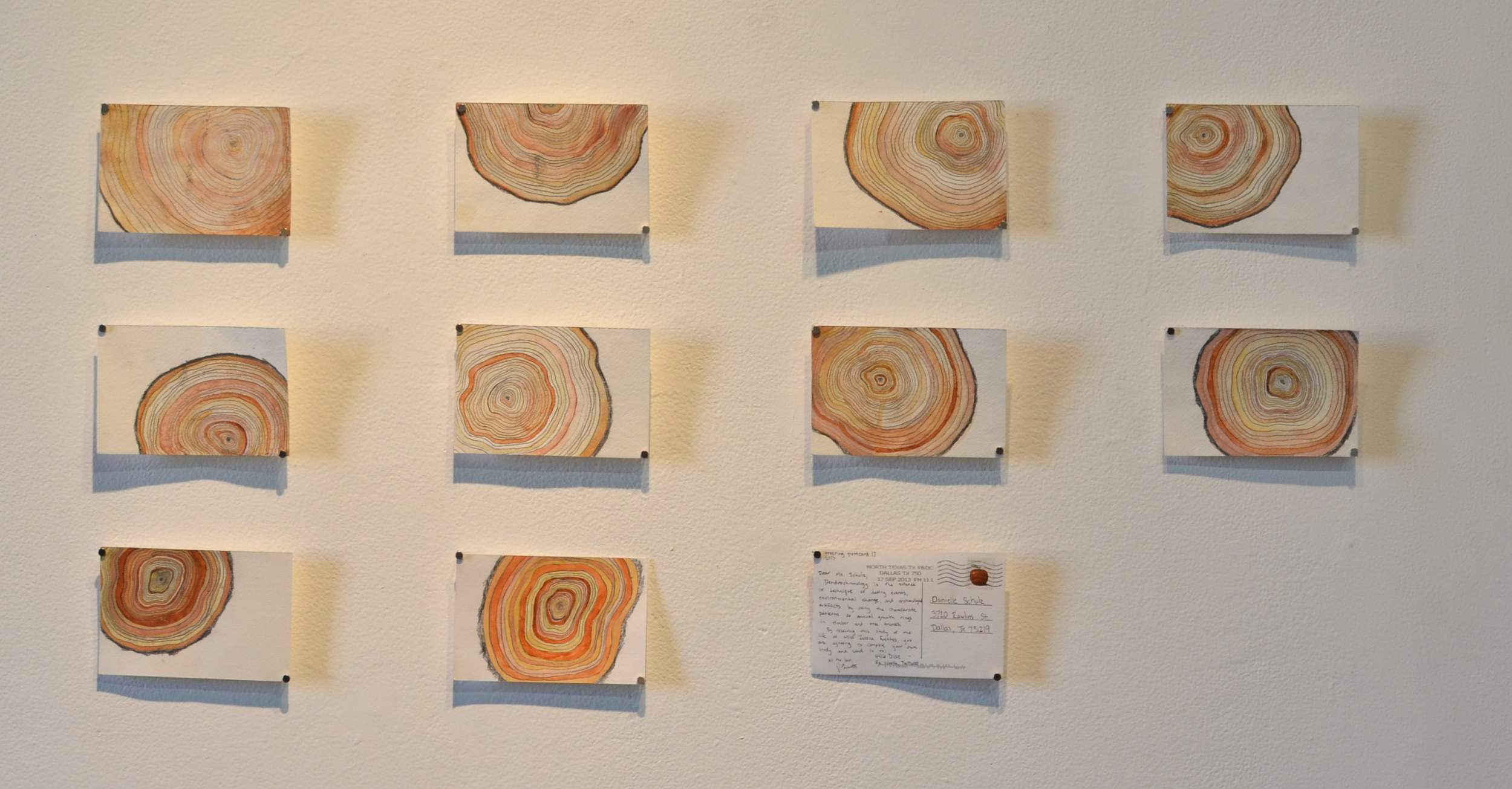 tree ring postcards