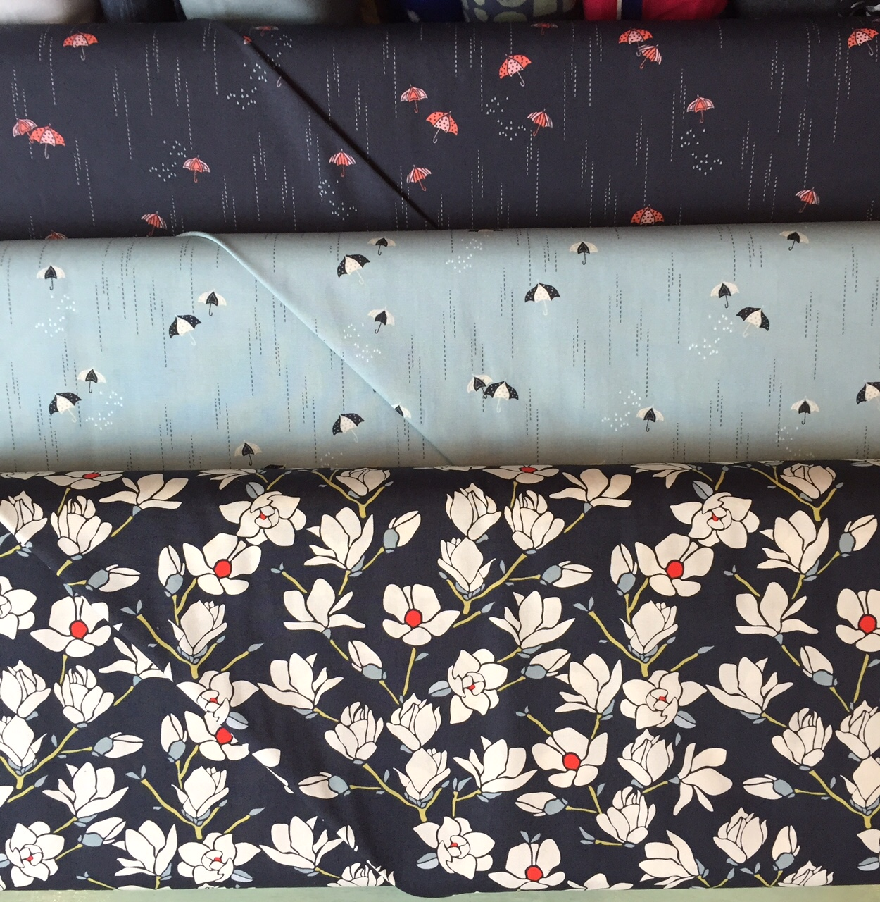 Magnolias and umbrellas from Art Gallery
