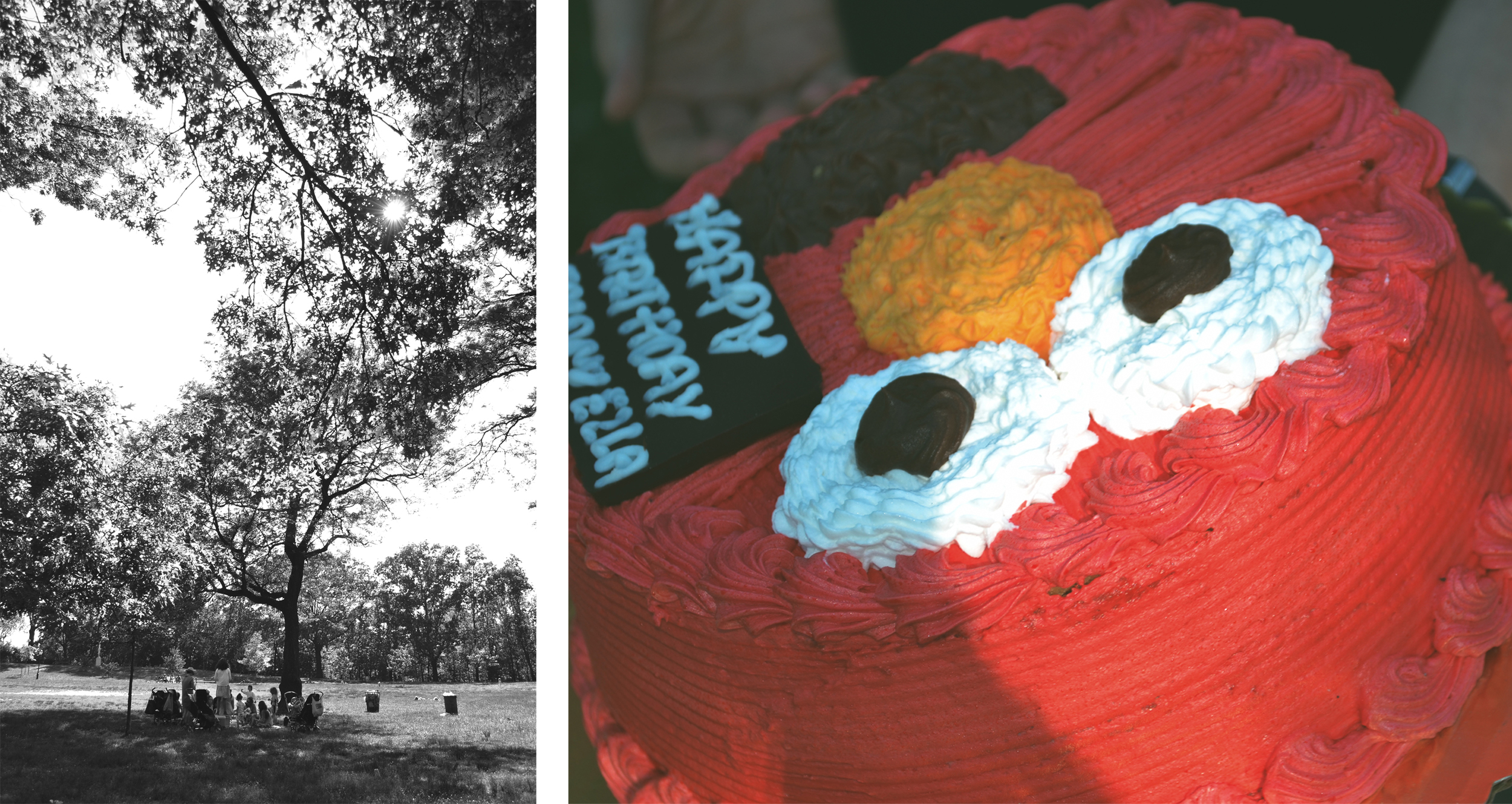 Emanuella's 2nd birthdayin the park