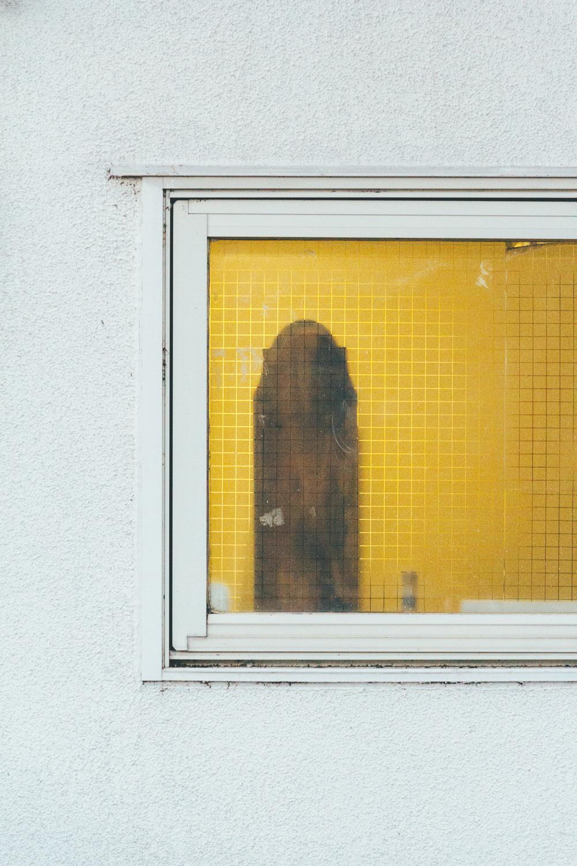 Behind Glass #9163 (Komae)