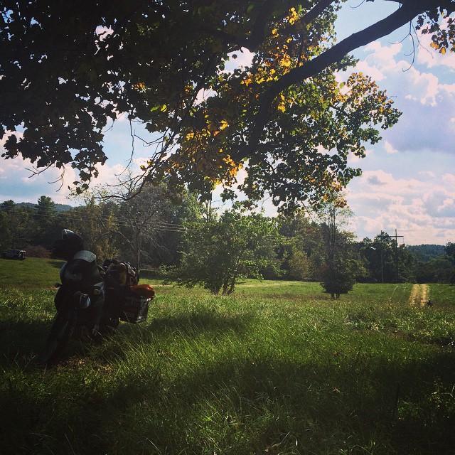Tonight's campsite, deep grass and beautiful light. It's a hard life. #camp #motorbike #overland