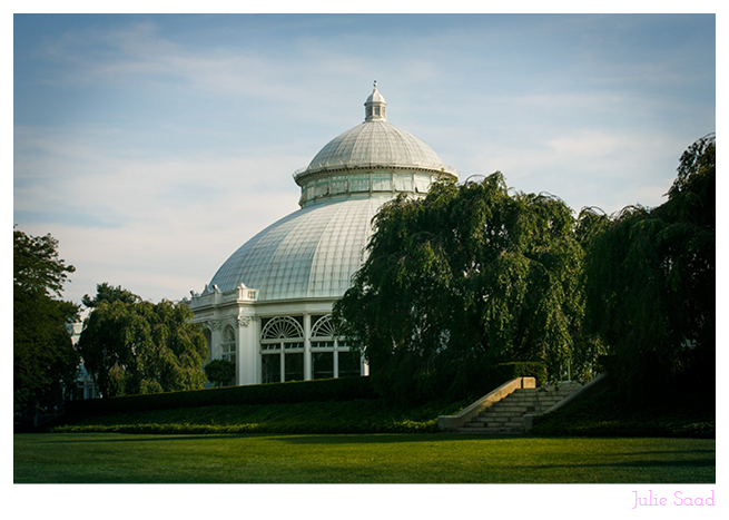 New_York_Botanical_Gardens_Wedding_01.jpg