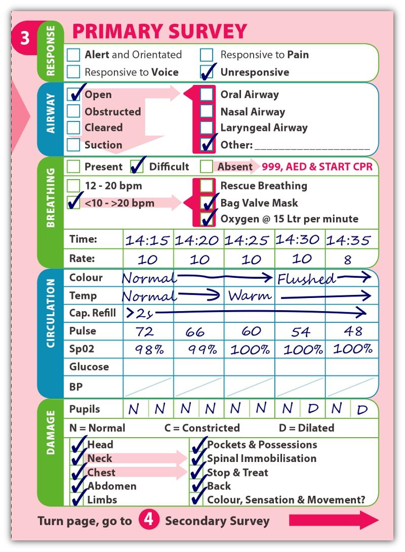3b Primary Survey.jpg