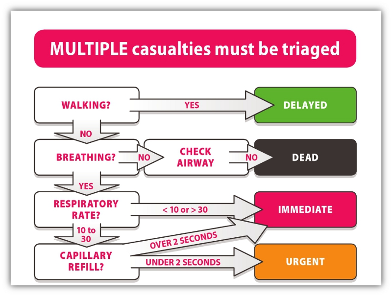 Casualty Card Real First Aid