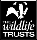 Wildlife Trust.jpg