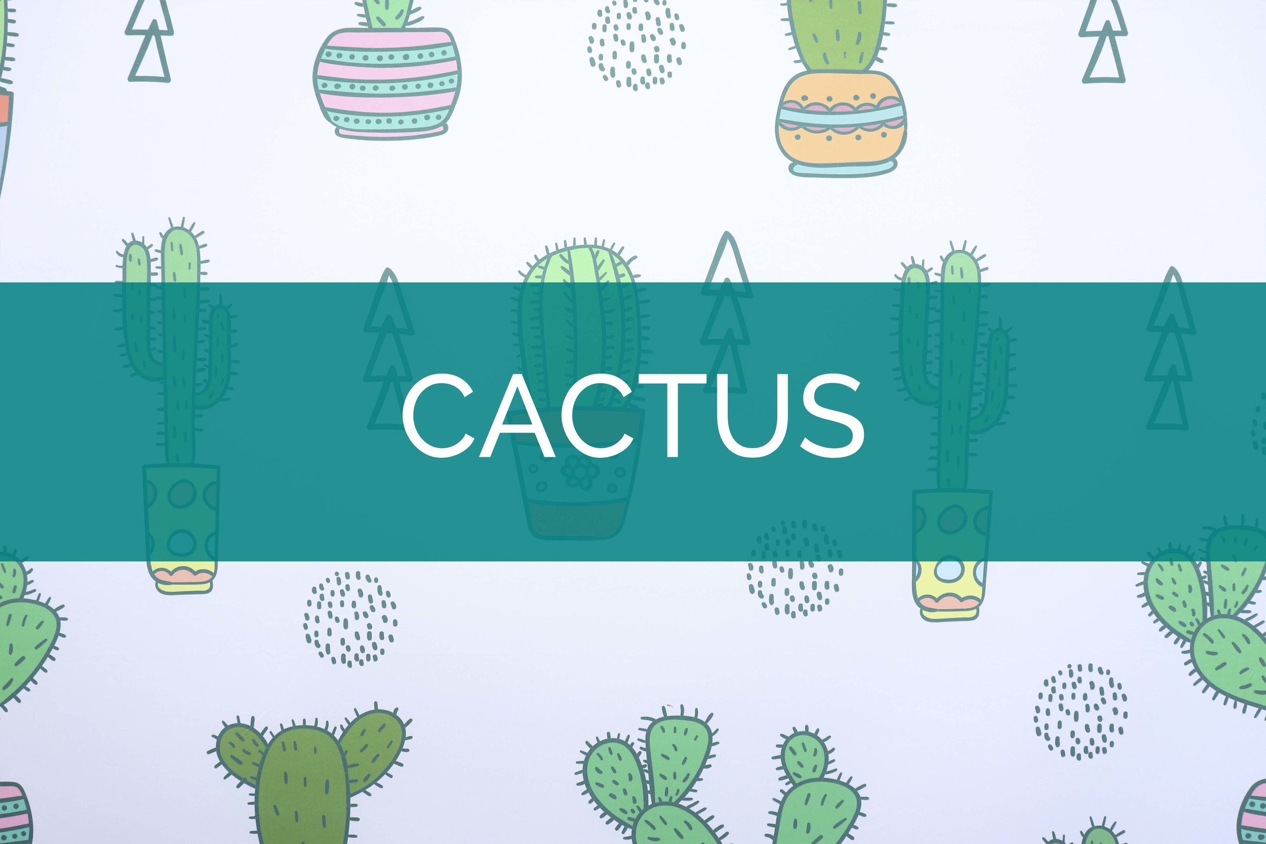 Cactus photo booth backdrop.jpg
