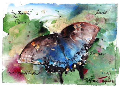 """""""In Beauty she flies...soars...love...gratitude"""""""