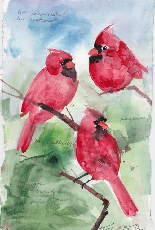 Trio of Cardinals:  In Savannah, In Nature...