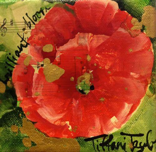Red Poppy:  Brilliant Bloom