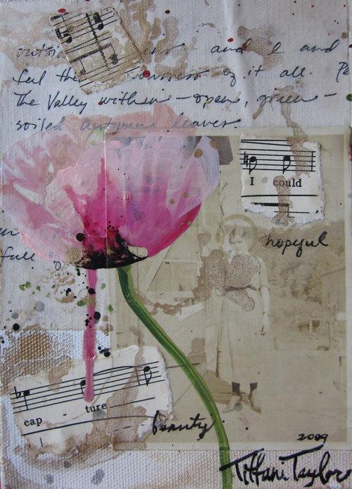 Pink Poppy:  Hopeful