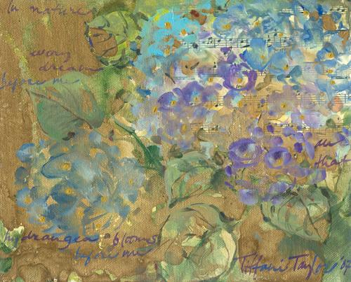 In Nature:  Hydrangea Blooms